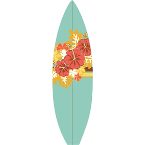 echo park surf board