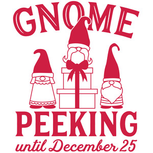 gnome peeking until december 25