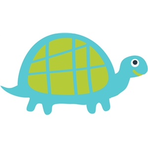 animal slow woodland turtle