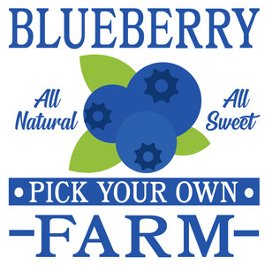 blueberry farm sign