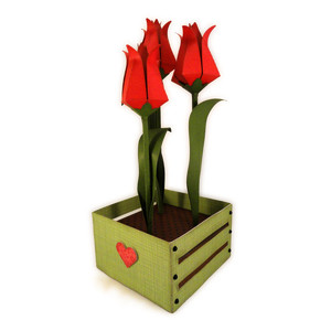 tulip 3d cubic three stems in crate