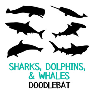 sharks, dolphins and whales doodlebat