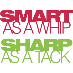 'smart as a whip sharp as a tack' phrase