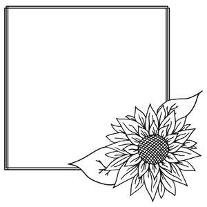 sunflower square sketch frame