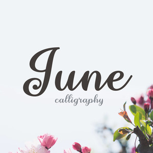 june calligraphy font