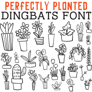 cg perfectly planted dingbats