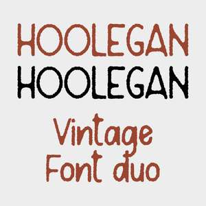 hoolegan duo