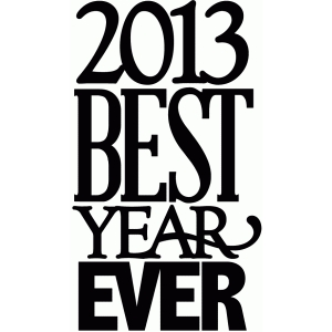 2013 best year ever - vinyl phrase