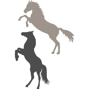 horses standing up silhouette