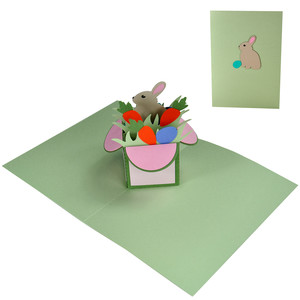 baby bunny pop up box in a card