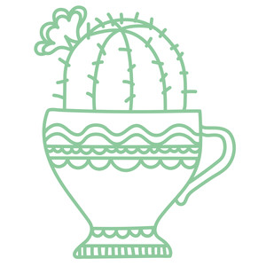 cactus in teacup