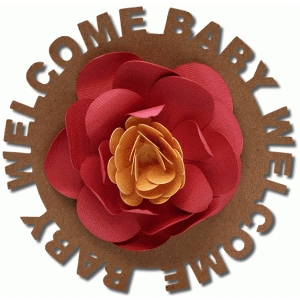 welcome baby sentiment flower