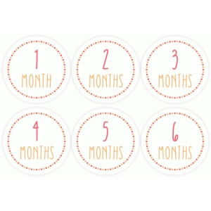 month stickers 1-6 pink