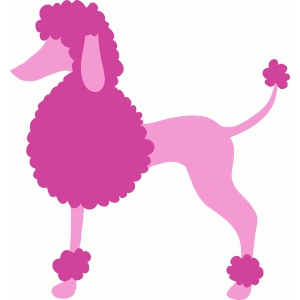 french poodle