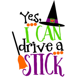 yes i can drive a stick