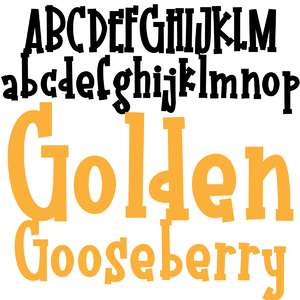 pn golden gooseberry bold