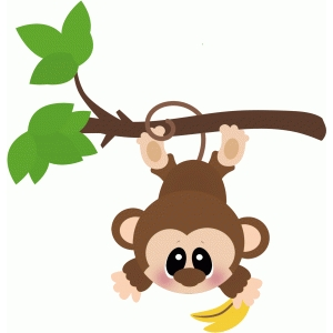 monkey hanging from tree