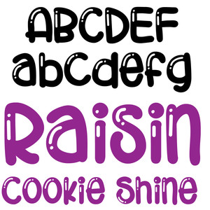zp raisin cookie sine