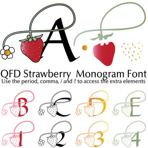 qfd strawberry monogram font