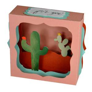 southwest cactus gift card box