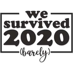 we survived 2020 (barely)