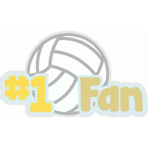 volleyball fan