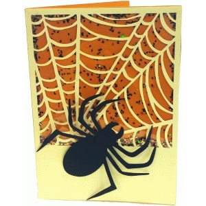 spiderweb shaker card