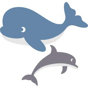 set whale and dolphin