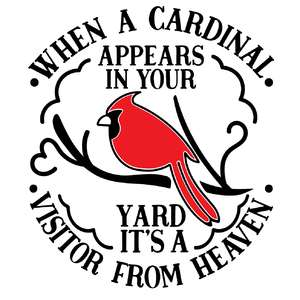 when a cardinal appears in your yard