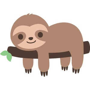 cute sloth on branch