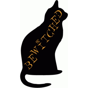 bewitched cat