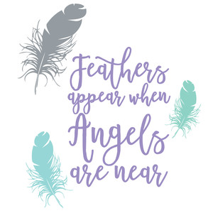 feathers appear quote