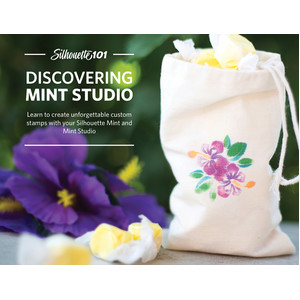discovering mint studio - ebook