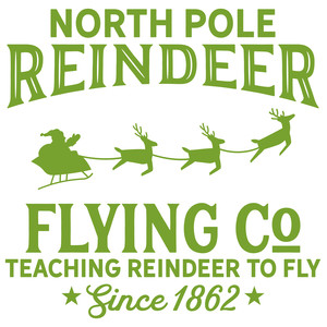 north pole reindeer flying co