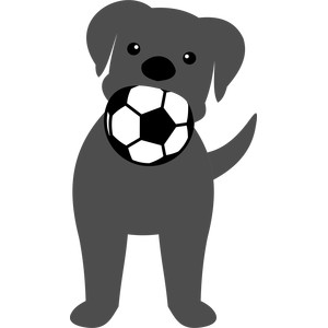 dog biting the soccer ball