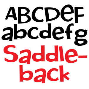 pn saddleback