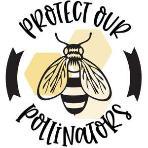 protect our pollinators honey bee