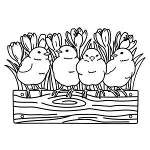 chicks on a flower planter