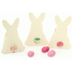 hopping bunny treat box