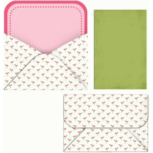 punched hole envelope and liner