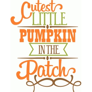 cutest little pumpkin phrase
