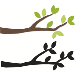 2 branch options