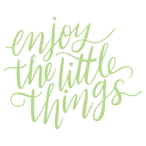 enjoy the little things handlettered