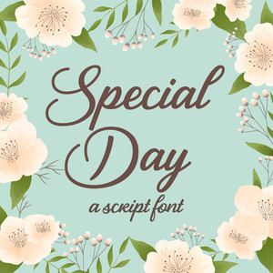 silhouette special day script font