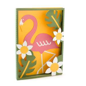 flamingo box frame