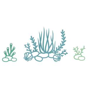 seaweeds and corals