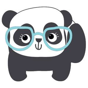 panda in glasses