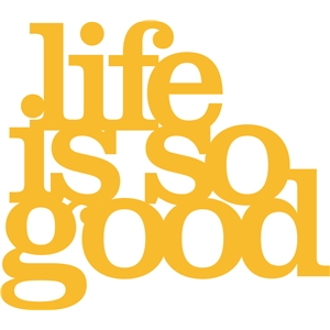 'life is so good' phrase