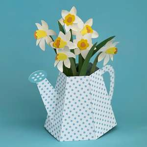 watering can with daffodils box card