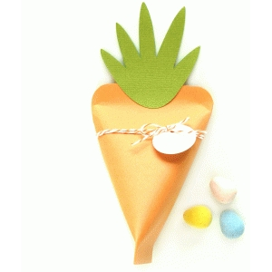 carrot treat box